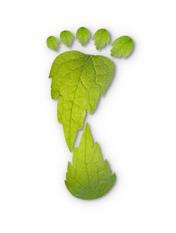 Green services supplier